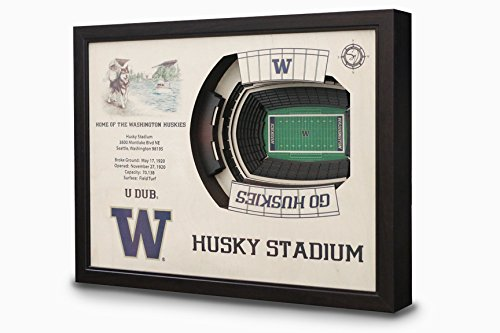 NCAA Washington Huskies - Husky Stadium Stadiumview Wall Art, One Size, Birch Wood by Sportula
