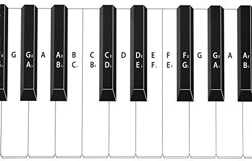 Practice Keyboard Amp Note Chart For Behind The Piano Keys