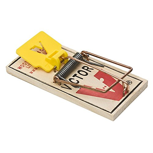 EXPANDED TRIGGER MOUSE TRAP (pack of 72)