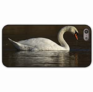 iPhone 5 5S Black Hardshell Case swan water bird Desin Images Protector Back Cover by runtopwell