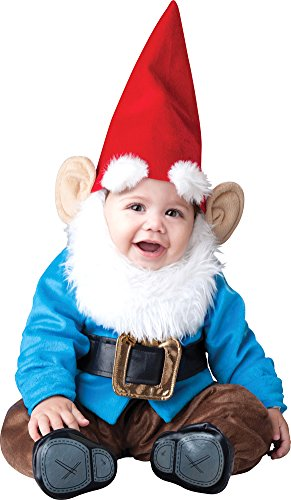 Unisex-Baby - Lil Garden Gnome Toddler Costume 12-18 Months (Gnome Girl Costume For Toddlers)