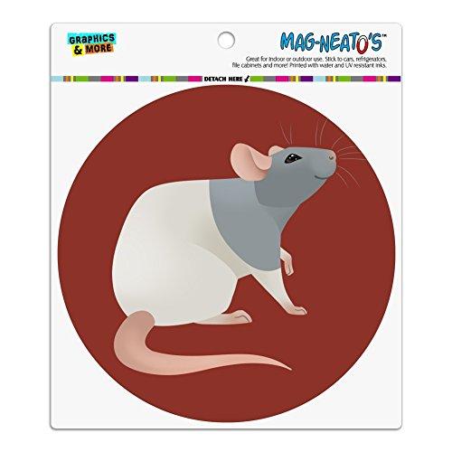 Graphics and More Hooded Rat Automotive Car Refrigerator Locker Vinyl Circle Magnet -
