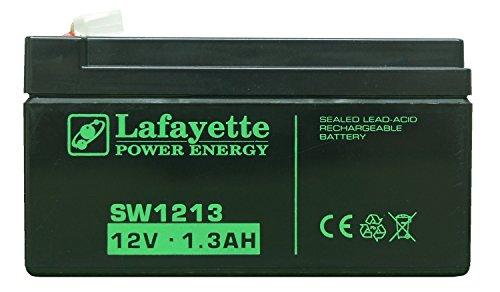 elbro smsba1,3e Backup-Batterie für sms-butler