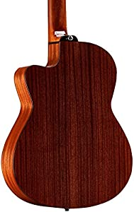 Alvarez Artist Series AC65HCE Classical Hybrid Acoustic-Electric Guitar, by Alvarez