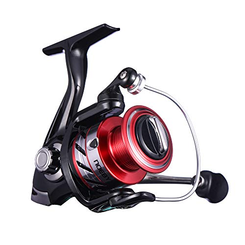 NOEBY Fishing Reels + Shallow Spool 5+1BB Spinning Reels Ultra Smooth Reel for Saltwater or Freshwater Bass (Red 4000)