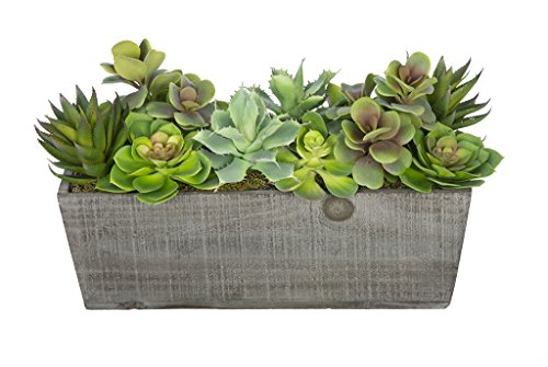 Artificial Succulent Garden in Grey-Washed Wood Ledge by House of Silk Flowers (Image #2)