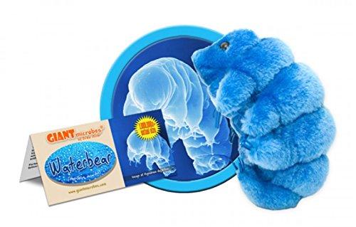 (GIANT MICROBES Waterbear (Hypsibius dujardini) Plush Toy )