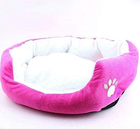Enko Cuccia//letto 2 in 1 per animali domestici per cani e gatti. Adatto per 3 kg di gatti e cani per uso in ambienti interni portatile e pieghevole elegante e comoda