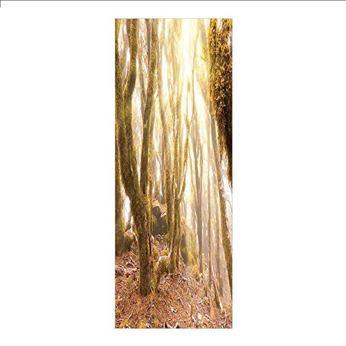 3D Decorative Film Privacy Window Film No Glue,Rainforest Decorations,Morning Sun Rays Mist in Virgin Mountain Forest Moss on Trees Natural Paradise,Green Brown,for Home&Office