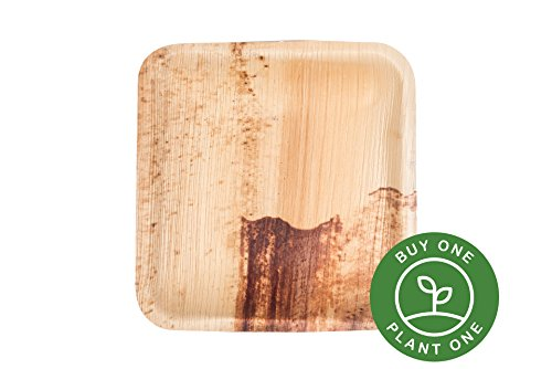 25 Heavy Duty Disposable And Home Compostable Party Plates Made From Palm Leaf   6 Inch Square