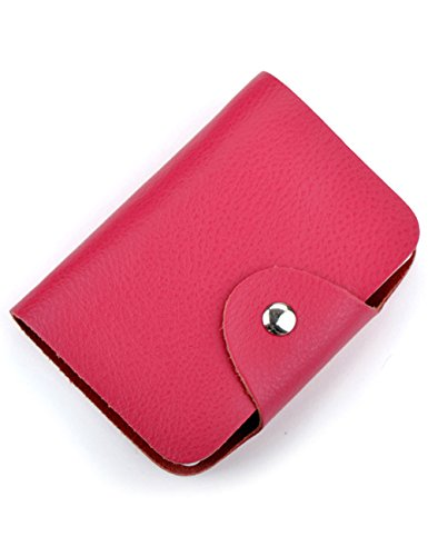 Aladin Unisex Small Leather Credit Card Holder with 26 Plastic Card Slots Rose ()