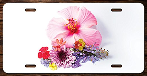 Hibicus Flower with Bouquet Vanity Front License Plate Tag Printed Full Color KCFP070 (Flower Plates License)