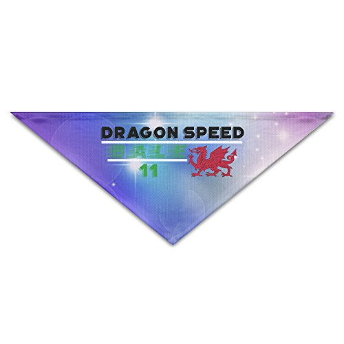 European National Dress Costumes (Pet Bandanas - Personalized Dragon Speed Bale Pet Bandana Scarf - Triangle Scarf Collar Neckerchief For Dog Cat)