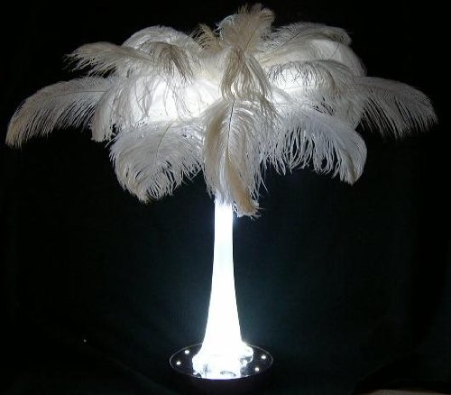 The 10 Best Ostrich Feathers Bulk 2018 Top Best Review