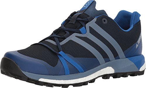 adidas outdoor Men's Terrex Agravic GTX¿ Collegiate Navy/Raw Steel/Blue Beauty 11.5 D US ()