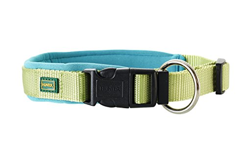 Vario plus collier en noprne 50-55 cm 25 mm vert/noprne pour chien en nylon bleu ptrole