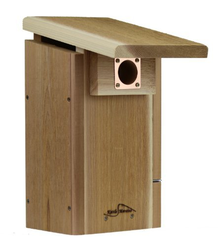 Bluebird Nest Box - Kettle Moraine Cedar Super Bluebird House with Side Opening Viewing Window