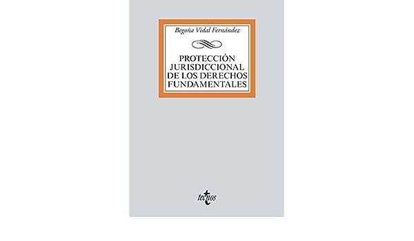 Protección jurisdiccional de los Derechos Fundamentales ...