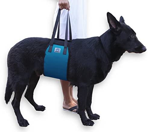 Large Blue Dog Lift Support Harness canine aid - Lifting Older K9 with handle for Injuries, Arthritis or Weak hind legs & Joints. Medium and Large breed Assist Sling for mobility & Rehabilitation.