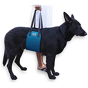 Amazon.com : Dog Lift Support Harness Back Sling Helps ...