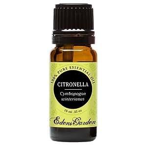 Edens Garden Citronella 10 ml 100% Pure Undiluted Therapeutic Grade Essential Oil GC/MS Tested