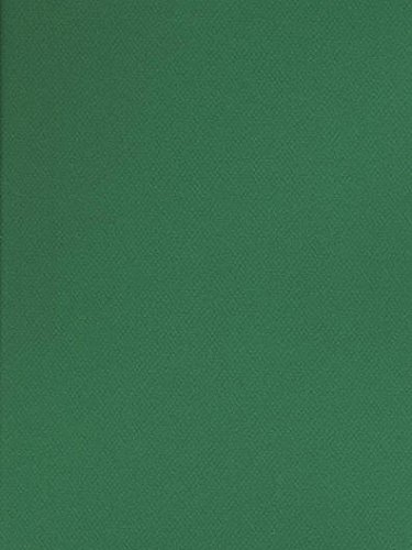 Canson Mi-Teintes Tinted Paper (Viridian) - 19 In. x 25 In. 4 pcs sku# ()