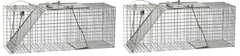 et One-Door Cage Trap for Raccoons, Stray Cats, Groundhogs, Opossums, and Armadillos (2-Pack) (Havahart Easy Set)