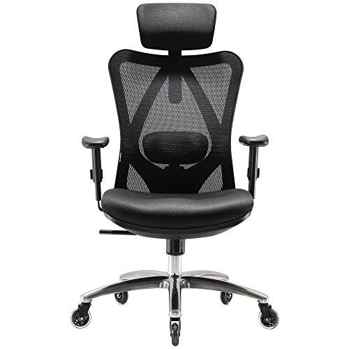 XUER Ergonomics Office Chair Mesh Computer Desk Chair,Adjustable Headrests Chair Backrest and Armrest's Mesh Chair (Black) ()