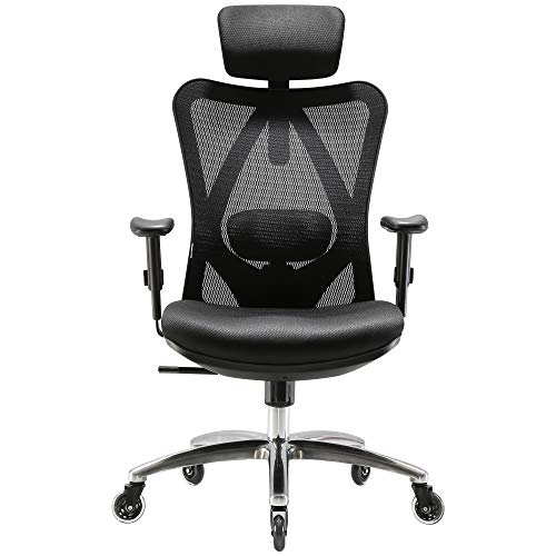 XUER Ergonomics Office Chair Mesh Computer Desk Chair,Adjustable Headrests Chair Backrest and Armrest s Mesh Chair Black