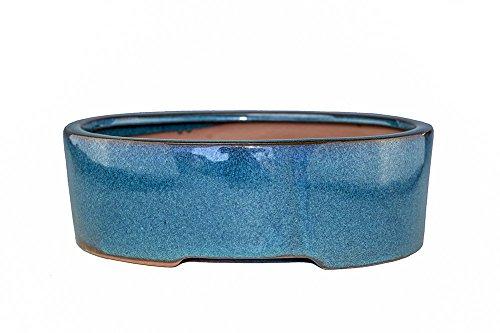 Medium Glazed 8.5