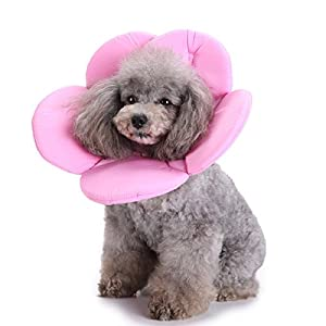 S-Lifeeing Dogs Cats Medical Grooming Pet E-Collar Recovery Remedy Cone Protective Dog Lick Caught Soft Sponge… Click on image for further info.