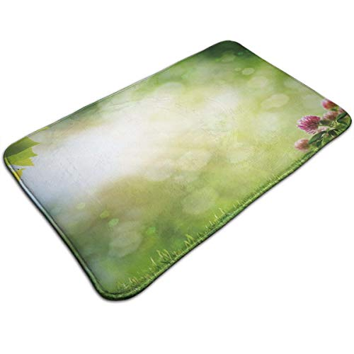 Bath Mat,Fresh Spring Meadow with Blooming Wild Flowers Soft Blurry Morning View,Plush Bathroom Decor Mat Non Slip Backing,19.531.5 inch