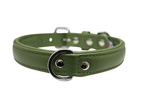 Leather Collar Genuine Retriever Terrier