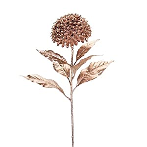 """Diva At Home Club Pack of 12 Glossy Brown Artificial Allium Stem with Flower Decorative Picks 27.5"""" 3"""