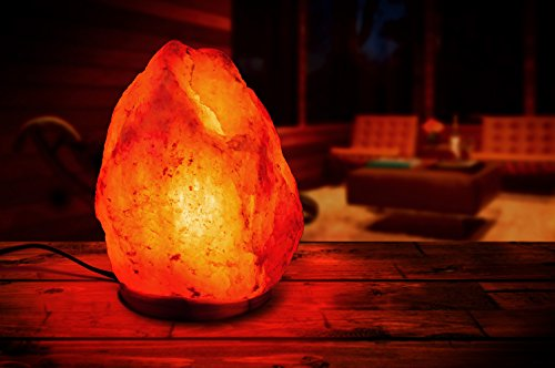 HemingWeigh Natural Himalayan Rock Salt Lamp 7-13 lbs with - Import It All