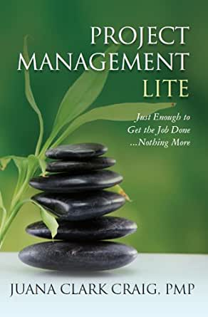 Amazon com: Project Management Lite: Just Enough to Get the