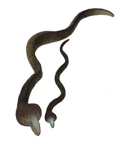 Growing Snake - Giant Growing Snake