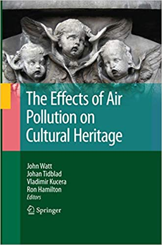 The Effects of Air Pollution on Cultural Heritage: Amazon.es ...