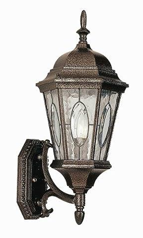 Trans Globe Lighting 4715 RT Outdoor Villa Nueva 21
