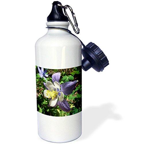 (3dRose wb_4189_1 Columbine Flower Sports Water Bottle, 21 oz, White)