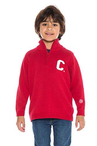 Alma Mater NCAA Cornell Big Red Boys Quarter Zip Sweater, Small, Crimson