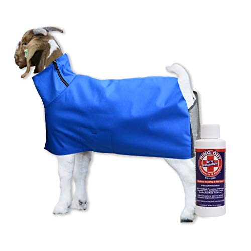 Show Pro Blue Goat Blanket Mesh Butt for Show Goats - Livestock Supplies for Goat Cover. Free Ring Out Concentrate for Proven Ringworm & Fungus Prevention Included (Large)