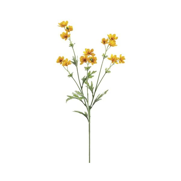 27.5″ Baby Cosmos Spray x5 Gold Yellow (Pack of 12)