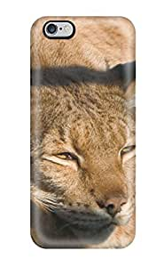 High-quality Durable Protection Case For Iphone 6 Plus(baby Cougar Wallpaper)