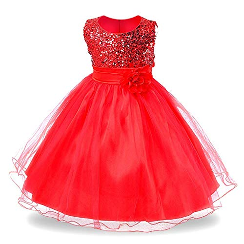 Baby Girls Infant Embroidery Dress Wedding Toddler High-end Dress Flower -