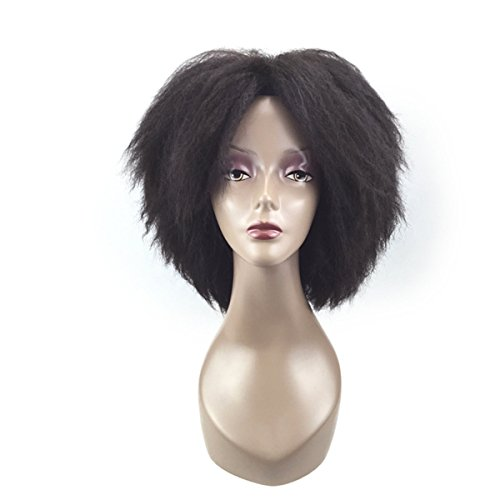 COPLY Short Dark Brown Afro Kinky Curly Wig African American Wigs for Black Women Heat Resistant Synthetic Wig 40cm 16