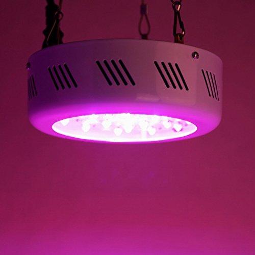 LED-Pflanzenleuchte