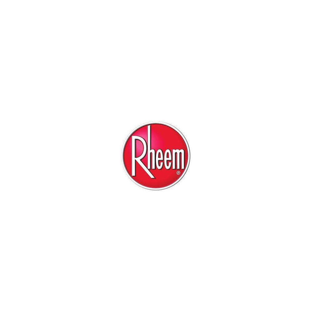 RHE68-101807-03 Filter - Permanent by Rheem B009AXCWG8