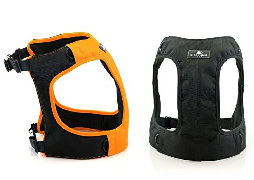 Clickit Terrain Dog Safety Harness ( Black - Medium ) by Sleepypod (Image #3)