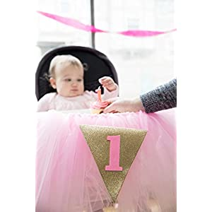 Posh Peanut 1st Birthday Tutu Skirt for High Chair Party Decorations for Your Baby Girl Special Day (Pink)